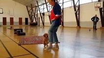 En Alsace, Marie-France Mattern danse avec son caniche Clips