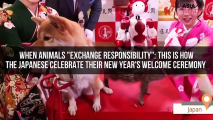 """When animals """"exchange responsibility"""": This is how the Japanese celebrate their New Year's Welcome Ceremony"""