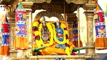 Tamil Deviotional Song | Kanaka Sabhapathi | Nithyasree Mahadevan |Gopalakrishna Bharathi