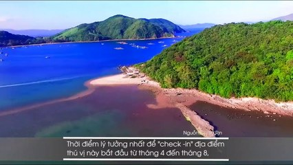 """Xao xuyến đắm chìm trước những con đường ẩn giữa lòng biển khơi """"độc nhất vô nhị"""" ở Việt Nam"""