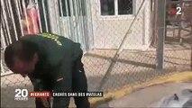 Les images incroyables de ces migrants cachés dans des matelas alors qu'ils tentaient de rejoindre l'Espagne