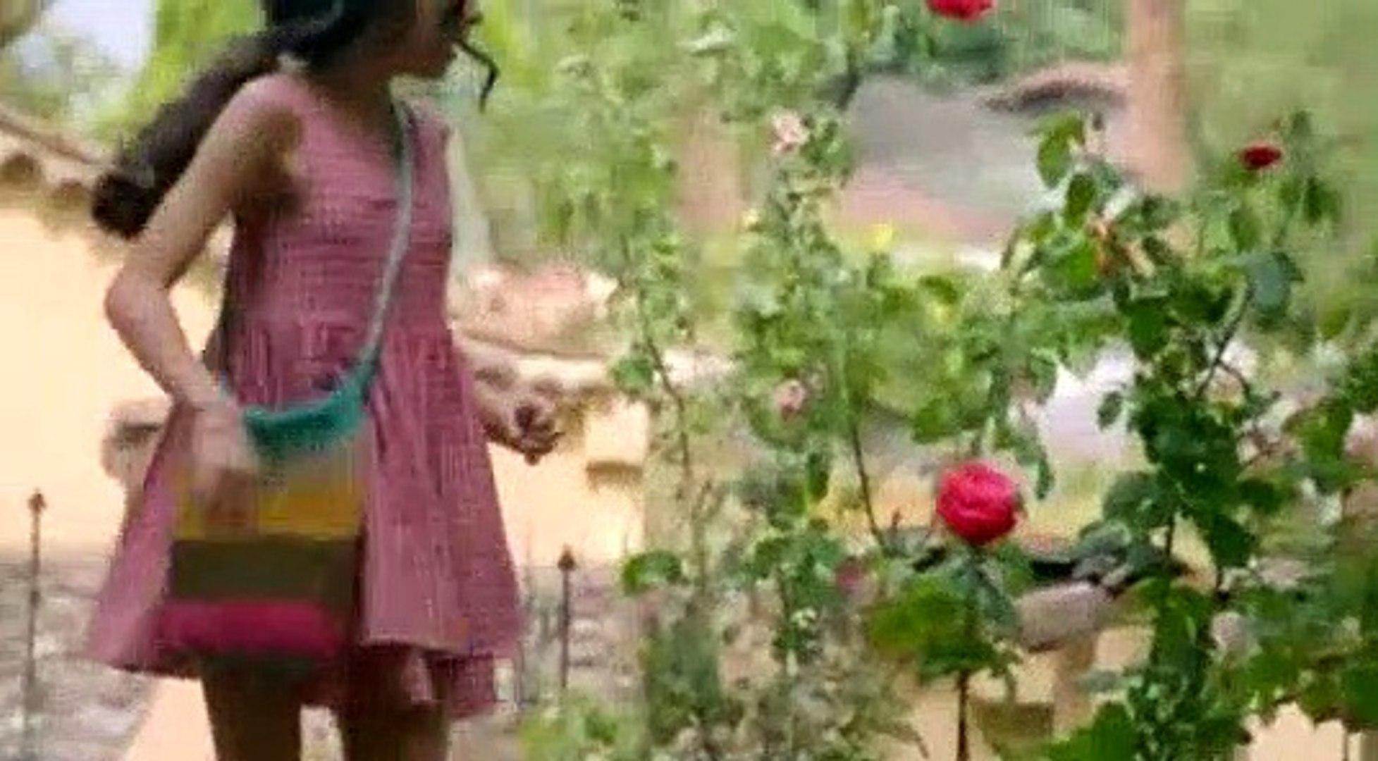 50:17 Lady, la vendedora de rosas Capítulo 01