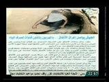 الجيش يواصل حملته لغلق الانفاق و حماية الشعب من المهربين و تجار السلاح