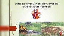 Epoxy Resin a Tree Stump (using ArtResin) - Part 1 of 3