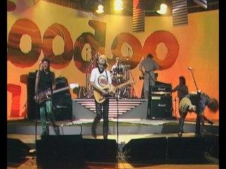 Hoodoo Gurus - The Generation Gap