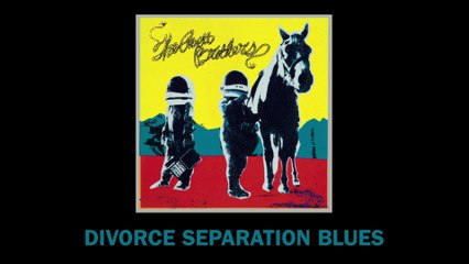The Avett Brothers - Divorce Separation Blues