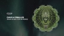 Chus & Ceballos - Senja In Bali - Fer BR Tech Remix
