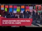 Campesinos bloquean otra vez accesos a la Cámara de Diputados