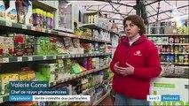 Pesticides : le glyphosate interdit aux particuliers et aux collectivités