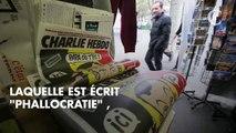 Valérie Trierweiler seins à l'air pour Charlie Hebdo : son message bien cinglant à Yann Moix