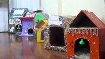 Minik öğrencilerinden 'Minik Patiler Üşümesin' projesi