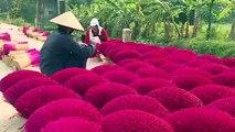 """Au Vietnam, un """"village d'encens"""" se prépare aux fêtes du Têt"""