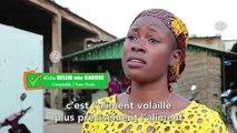 Burkina Faso : FASO GRAIN, le meilleur ami des éleveurs