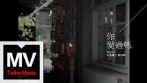 音樂鐵人劉明峰 Ray Liu【你愛過嗎】HD 高清官方完整版 MV