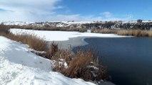 Ahlat'ta gölet kısmen dondu - BİTLİS