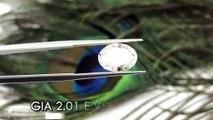 GIA Diamond 2 01卡 E色 VS2 Ex Ex None Oval Shape Diamond