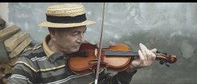 je suis des violons