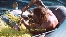 Un homme délivre quatre tortues bloquées dans un filet de pêche
