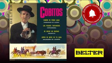 Cobitos - Camino de Pedro Abad (EP)