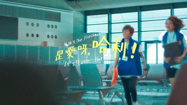 插班生 The Freshman - [是愛呀,哈利 It's Love, Harry] 官方 - Official Music Video
