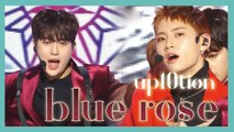 [HOT] UP10TION -  Blue Rose,  업텐션 - Blue Rose Show Music core 20190112