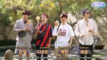 [INDO SUB] 190110 Travel the world on EXO's ladder Season 2 Teasers
