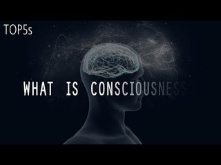 What is Reality?   5 Things We Still Don't Understand About The Human Brain...