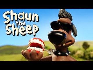 Bad Boy - Shaun the Sheep