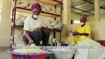Burkina Faso : FASO ATTIEKE pour transformer le manioc local