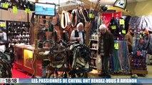 Les fans d'équitation ont rendez-vous à Avignon pour Cheval Passion