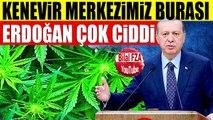 Erdoğan Kenevir İşinde TÜRKİYEYİ 1NUMARA YAPACAK Ekim Merkezi ve Sanayi İşte Burası Olacak