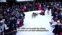 La Grande Odyssée Savoie Mont Blanc - Episode 4 Santé Animale