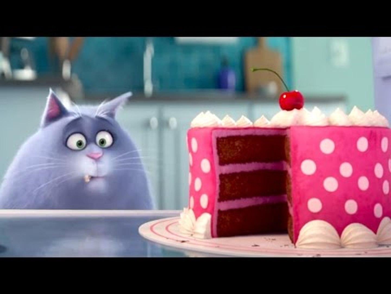 The Secret Life Of Pets Meet Chloe The Cat Clip Video