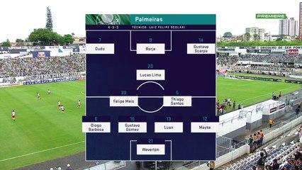 Palmeiras Resource  c666276f40f2c