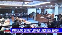 Panukalang 2019 nat'l budget, lusot na sa Senado