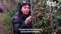 La Petite ceinture de Paris, un espace riche en biodiversité qui borde la capitale