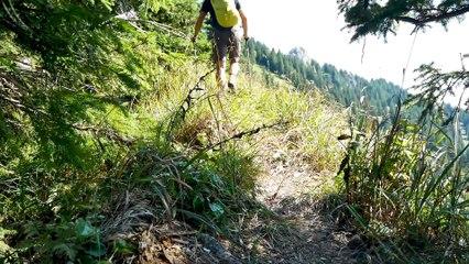Bergour in den Ammergauer Alpen: Über den Hennenkopf