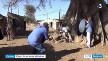 Cinéma : Omar Sy en terres africaines