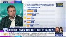"""Liste gilets jaunes aux européennes: le directeur de campagne veut des eurodéputés """"à la disposition des citoyens"""""""