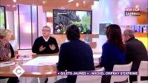 C à vous : échange tendu entre Michel Onfray et Patrick Cohen (vidéo)