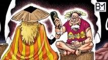 Tak Bisa Di Cegah!! Inilah Penyebab Shanks akan ke Wano ( One Piece )
