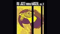 Best of Jazz Bossa Nova Music - Nu Jazz Meets Brazil