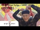 최강 일본 뮤직비디오 Candy Candy 리액션[퇴경아약먹자]