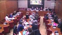 Commission des affaires culturelles : M. Roch-Olivier Maistre dont la nomination à la présidence du Conseil supérieur de l'audiovisuel (CSA) est envisagée par le Président de la République - Mardi 29 janvier 2019