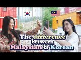 The difference between Malaysian / Korean when travelling abroad |Blimey CD Player