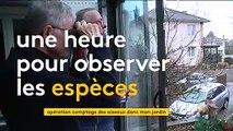 Participez au recensement national des oiseaux avec la LPO
