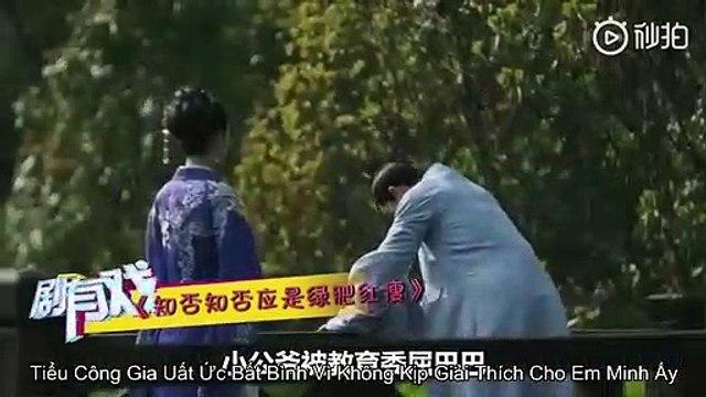 Giới Thiệu Phần tiếp Theo Minh lan Truyện ( vietsub )