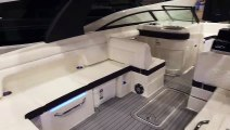 Sea Ray SDX 290 For Sale at MarineMax Port Clinton