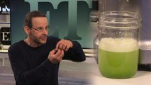 Celery Juicing: Details on the Celebrity Health Trend With the Medical Medium (Exclusive)