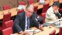 Délégation aux collectivités territoriales et à la décentralisation : M. Philippe WAHL, Président-Directeur général du Groupe La Poste - Mercredi 30 janvier 2019